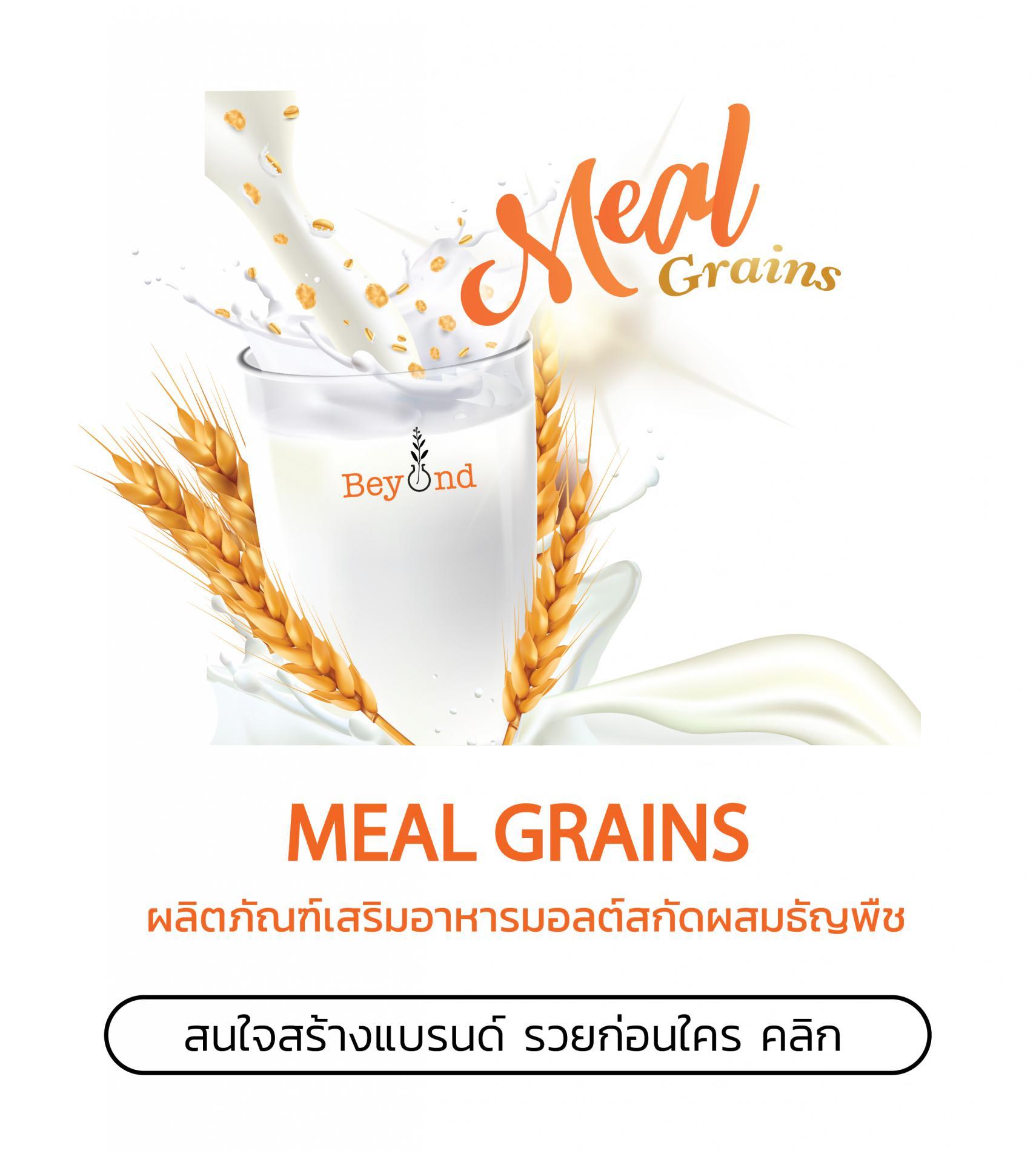 สร้างแบรนด์อาหารเสริม Meal Grains รวยก่อนใคร